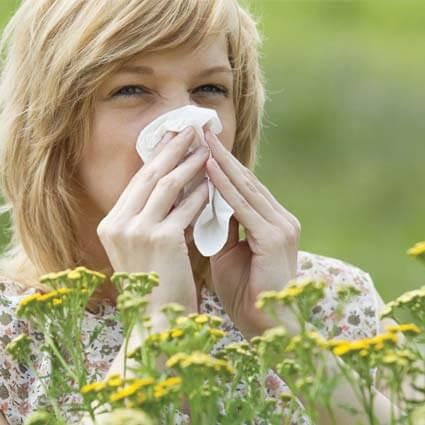 allergie saisonnière acupuncture
